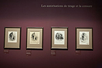 Fig. 15: Installation of Daumier exhibition